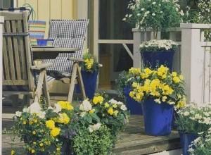 【华鹏帝景】通往幸福生活的秘密花园